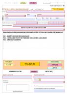 Formular S1013